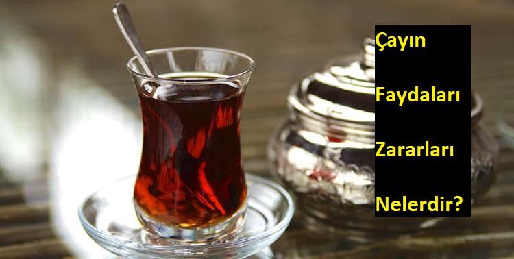 çayın faydaları, çayın zararları, siyah çayın faydaları, çayın faydaları nelerdir, çayın zararı var mı